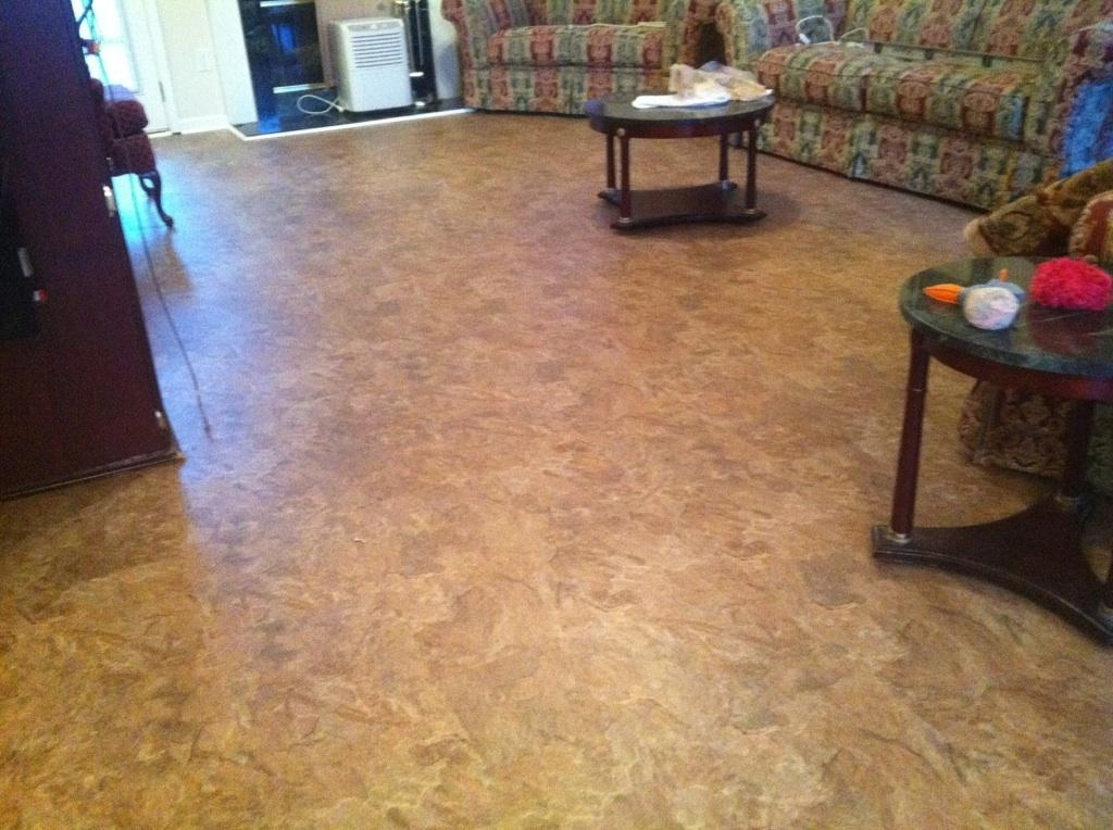 The many benefits of cork flooring - Advantages of installing a cork flooring ...