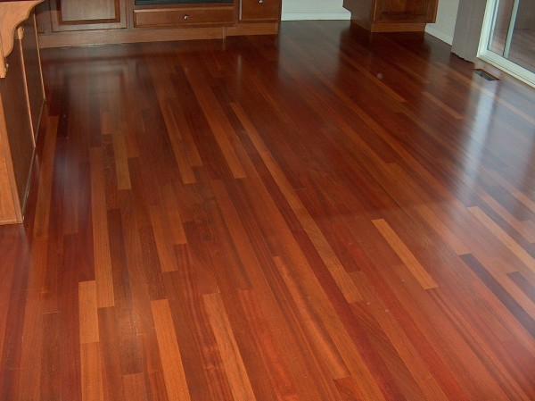 Exotic hardwood species for Cherry flooring