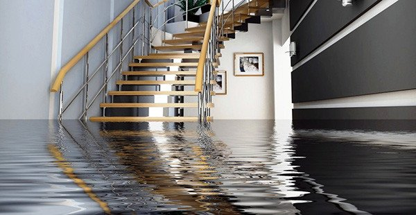 How To Deal With Warped Floorboards and Water Damage